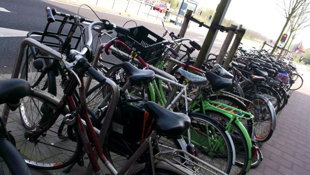 amsterdam bisiklet parklari